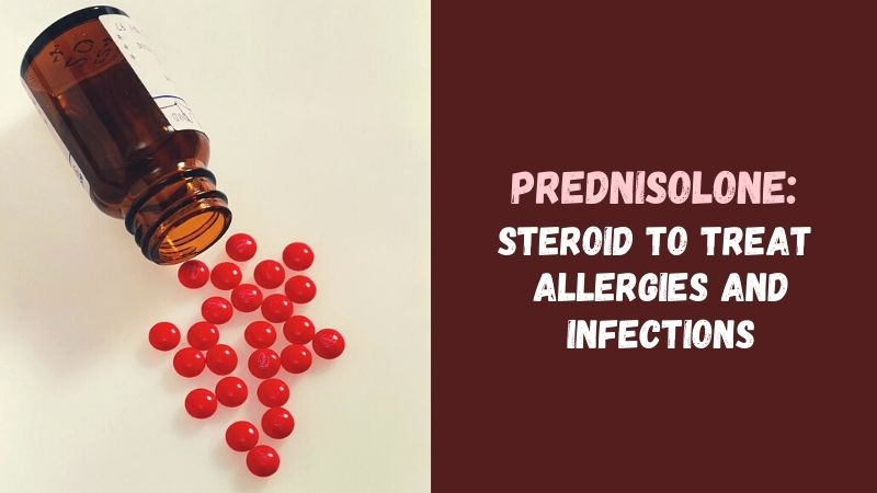 Prednisolone Steroid to Treat Allergies and Infections
